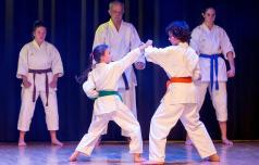Najboljši karateisti sveta v Slovenskih Konjicah