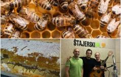 Danes praznujejo čebele!