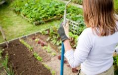 Ste že naredili načrt opravil v vašem vrtu?