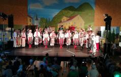 V Kozjem navdušili folkloristi, zmaji in še kdo