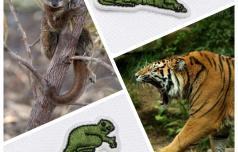 Z majicami do ohranjanja ogroženih živali?