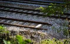 Z vlakom mimo Hrastnika kmalu spet brez zamud