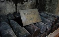 Najstarejše vino že 100 let hranijo v Ptujski kleti