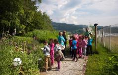 V Slovenski Bistrici bo čebelarski center