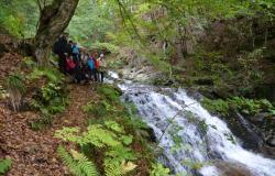 Na Slovenjebistriškem razvijajo doživljajski turizem