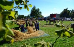Kozjanski teden starih obrti in običajev v Dobju