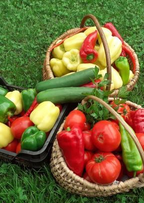 Ko domači pridelki oz. vitamini gledajo že čez košare Foto: Monika Tavčar