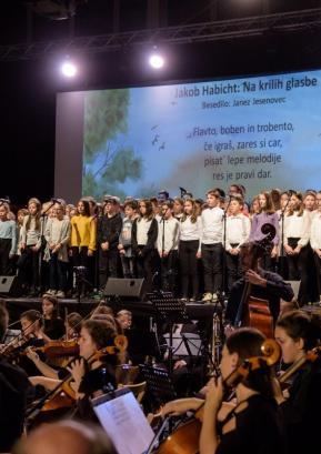 Med slovesnim koncertom, na katerem so nastopili učenci in učitelji. Foto: Jana Jocif