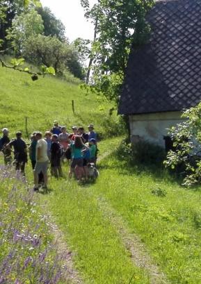 Zadnji dan Tedna podeželja na Loškem so zaokrožili pohodniki s pohodom s Hleviš v Žetino. Foto: Kristina Miklavčič
