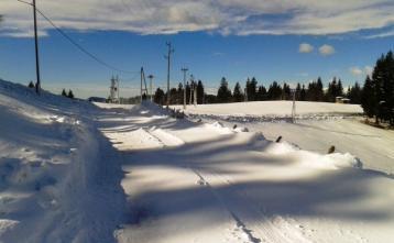 Cesta na Žirovskem vrhu