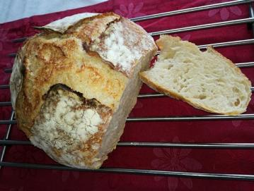 Kruh, pripravljen z drožmi Foto: Jure Ferlan
