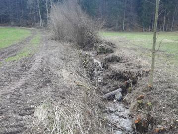 Če skrbimo za redno vzdrževanje pretočnosti rek in potokov ter odgovorno ravnamo z okoljem, lahko znatno zmanjšamo posledice poplav.