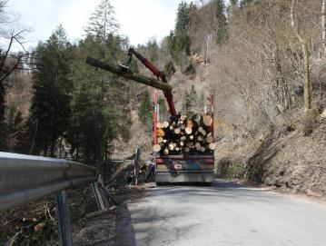 Začela se je sanacija zidov in brežin na kilometer in pol dolgem odseku državne ceste od Trebije do Hobovš. FOTO: GORAZD KAVČIČ
