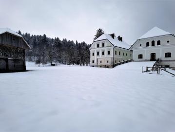 Projektni predlog Visoška naravna dediščina v okviru štirih ciljno zasnovanih aktivnosti želi ohranjati dediščino in razvijati dvorec v današnjem času.  FOTO: KRISTINA BOGATAJ