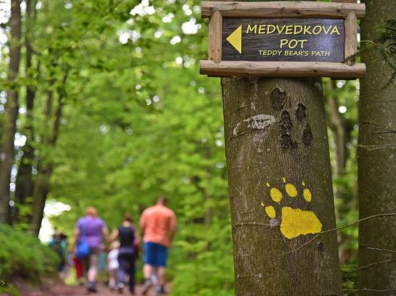 Medvedkova pot