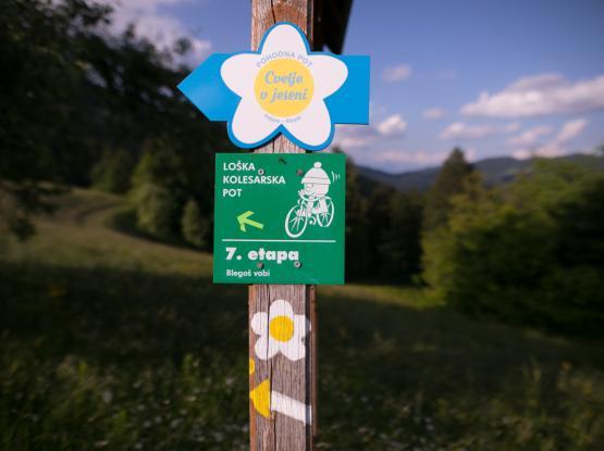 Tematska pot Cvetje v jeseni