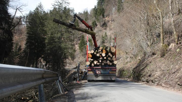 Sanacija zidov in brižin na odseku državne ceste od Trebije do Hobovš. Foto: Gorazd Kavčič
