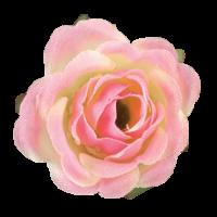 Cvet vrtnice, Ø30mm, rožnat