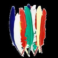 Indijanska peresa, 20 - 30 cm, mešana, 10 kosov