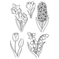 Komplet štampiljk, 74 x 105 mm, pomladne rože, 5 delni