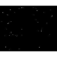Mini štampiljke Marabu, živali, 4 kosi
