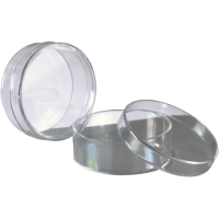 Plastična škatlica za perle, Ø4 x 1.5 cm