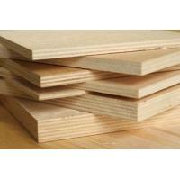 Vezana plošča, 10 mm, 20 x 30 cm, breza
