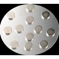 Zelo močni magnetki, Ø10 mm, 12 kosov