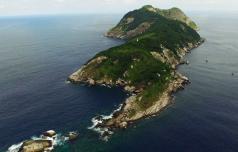 Otok, kjer kraljujejo kače