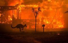 Slatinčanka, ki živi v Sydneyju, o avstralskih požarih