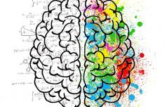 Kako obdržati možgane v dobri kondiciji?