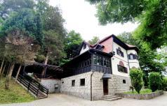 Vila Demetrović, slatinska hiša duhov