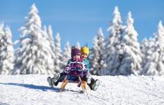 Na Rogli ena boljših zimskih sezon