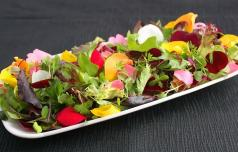 Katere jedilne cvetlice poznate?