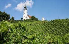 Novosti ob Šmarsko-virštanjski vinski cesti
