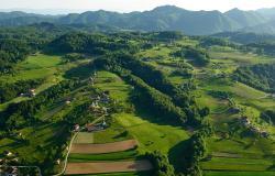 20 milijonov evrov za male kmetije