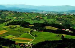Malim kmetijam pet tisoč evrov podpore