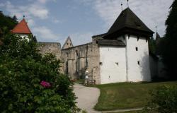 Maja začetek obnove cerkve v Žički kartuziji