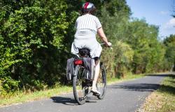 Leta 2022 varno s kolesom med Kozjem in Krškim