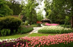 40 let cvetočega Mozirskega gaja