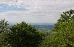 Skoraj 60 odstotkov Slovenije so gozdovi