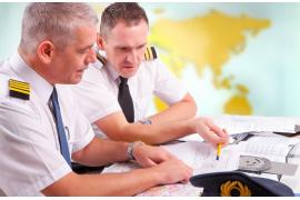 Flight Instructor (FI)
