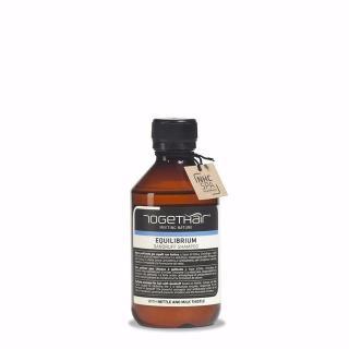 šampon TGH Equilibrium Dandruff Shampoo - Profesionalna nega las