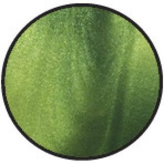 vosek CPM tekoč - Aloe vera - Allegra & Ruck - depilacija - roll-on