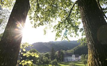 Dvorec Visoko Foto: Katja Jemec