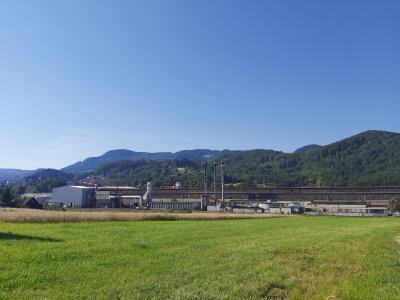 Podjetje Štore Steel tri četrtine svojih izdelkov proizvaja za avtomobilsko industrijo. (Foto. Radio Štajerski val)