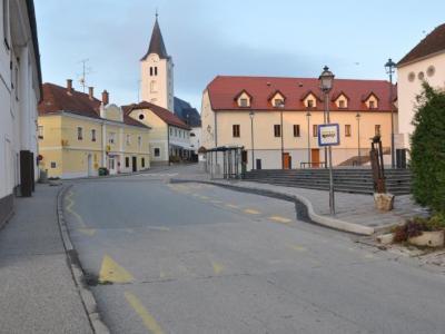 Vloge za pridobitev denarne nagrade na makolski občini zbirajo do 31. januarja. (Foto: Radio Štajerski val)