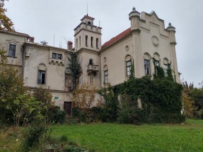 Dvorec je iz leta v leto v slabšem stanju, zdaj ga z nakupom želi rešiti občina. (Foto: Štajerski val)