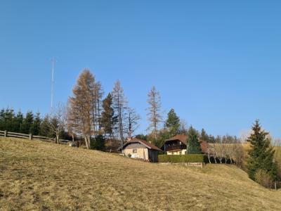 Vetrnica je od prvega stanovanjskega objekta objekta oddaljena zgolj 150 metrov. (Foto: Lea Ornik)