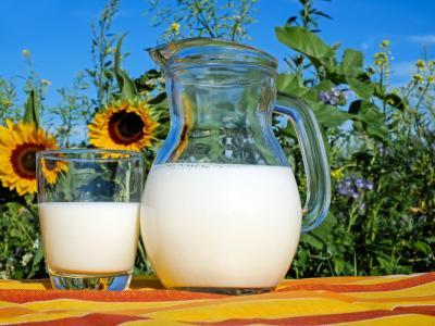 Kljub negotovim časom je konjiška zadruga lani odkupila nekoliko več mleka. (Fotografija je simbolična. Foto: Pixabay)